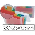 Carpeta Beautone clasificador fuelle polipropileno mini spectrafile 6 departamentos