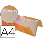 Carpeta Beautone clasificador fuelle polipropileno tamaño A4 color naranja 13 departamentos