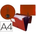 Carpeta Beautone clasificador fuelle polipropileno tamaño A4 color roja 1 hueco tarjeta 13 departamentos