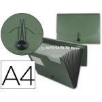 Carpeta Beautone clasificador fuelle polipropileno tamaño A4 color verde 1 hueco tarjeta 13 departamentos