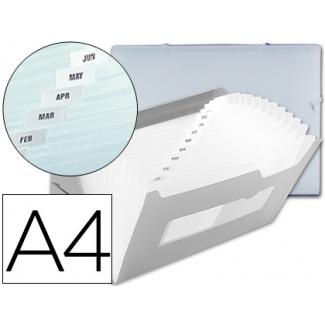 Carpeta Beautone clasificador fuelle polipropileno tamaño A4 transparente 2 huecos tarjetas 13 departamentos