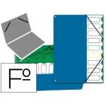 Carpeta clasificador tapa de plástico Pardo tamaño folio 9 departamentos color azul