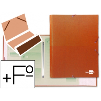 Liderpapel CS06 - Carpeta clasificadora con gomas, una solapa, tamaño folio+, 12 departamentos, color naranja