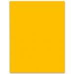 Liderpapel CX27 - Cartulina, 50x65 cm, 180 gr/m2, color naranja fuerte