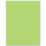 Cartulina Liderpapel 50x65 cm 180 gr/m2 color verde hierba