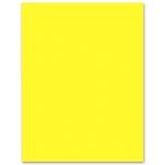 Liderpapel CX02 - Cartulina, 50x65 cm, 240 gr/m2, color amarillo