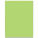 Cartulina Liderpapel 50x65 cm 240 gr/m2 color verde hierba