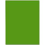 Cartulina Liderpapel 50x65 cm 240 gr/m2 color verde navidad