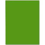 Cartulina Liderpapel 50x65 cm color verde navidad 180 gr