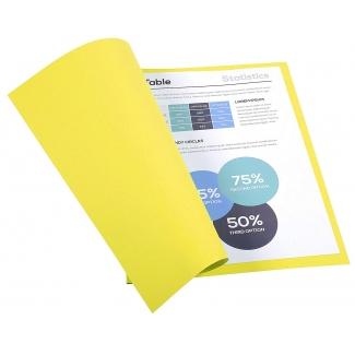 Exacompta Forever 410005E - Subcarpeta de cartulina reciclada, A4, 250 gr/m2, color amarillo