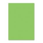 Papel color Liderpapel tamaño A3 80 gr/m2 hierba paquete de 500