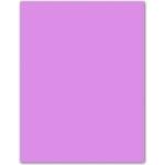 Papel color Liderpapel tamaño A4 165g / m2 lila paquete de 9