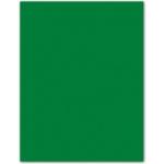 Papel color Liderpapel tamaño A4 165g / m2 verde acebo paquete de 9