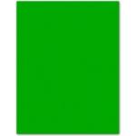 Papel color Liderpapel tamaño A4 165g / m2 verde paquete de 9
