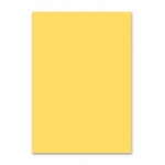 Papel color Liderpapel tamaño A4 80 gr/m2 crema paquete de 100