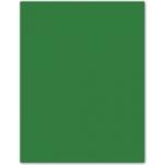 Papel color Liderpapel tamaño A4 80 gr/m2 verde acebo paquete de 15