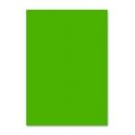Papel color Liderpapel tamaño A4 80 gr/m2 verde intenso paquete de 100