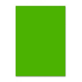 Liderpapel PC61 - Papel de color, A4, 80 gramos, color verde intenso, paquete de 100 hojas