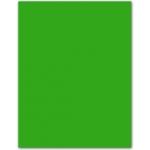 Papel color Liderpapel tamaño A4 80 gr/m2 verde paquete de 15