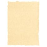Papel pergamino tamaño A4 160 gr color pergamino crema paquete de 25 hojas