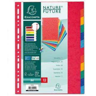 Exacompta 2412E - Separador de cartulina, A4+, 12 pestañas, multicolor