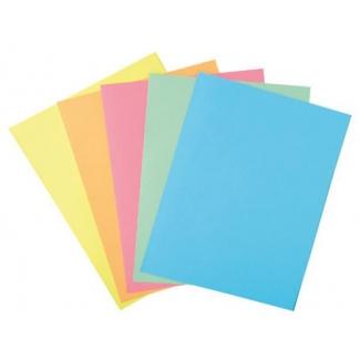 Liderpapel SUB-FSURT - Subcarpeta de cartulina, folio, 185 gr/m2, paquete de 25, colores surtidos