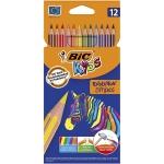Bic Kids Evolution Stripes 950522 - Lápices de colores, caja de 12 colores