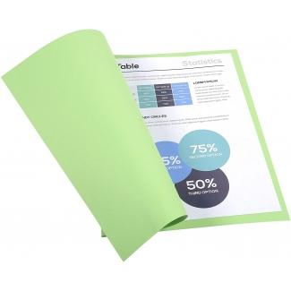 Opina sobre Exacompta Forever 410004E- Subcarpeta de cartulina reciclada, A4, 250 gr/m2, color verde