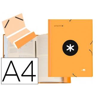 Liderpapel Antartik AW25 - Carpeta clasificadora con gomas, una solapa, tamaño A4, 12 departamentos, color naranja
