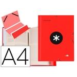Liderpapel Antartik AW26 - Carpeta clasificadora con gomas, una solapa, tamaño A4, 12 departamentos, color rojo