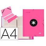 Liderpapel Antartik AW27 - Carpeta clasificadora con gomas, una solapa, tamaño A4, 12 departamentos, color rosa fluorescente