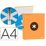 Liderpapel Antartik KA43 - Carpeta de anillas, 4 anillas redondas de 25 mm, cartón forrado, tamaño A4, color naranja fluorescente