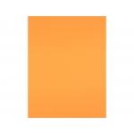 Liderpapel CT37 - Cartulina, 50x65 cm, 180 gr/m2, color mandarina